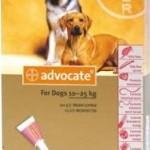 Advocate Large Dog Red (10-25kg)