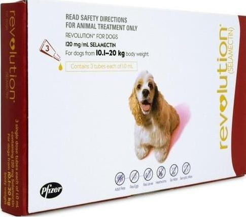 Revolution Large Dog Red (10-20kg)