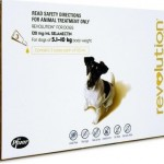 Revolution Medium Dog Brown (5-10kg)