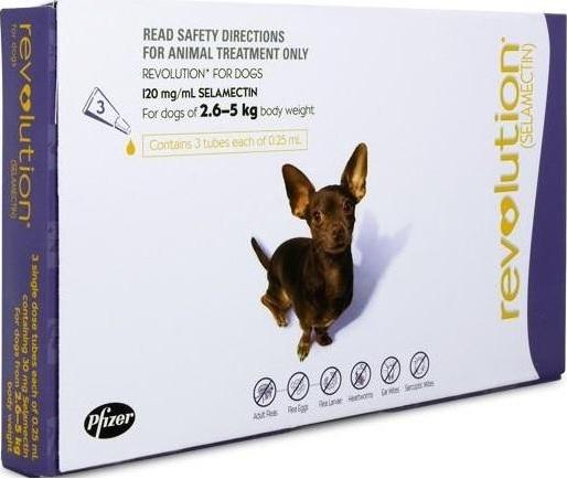 Revolution Small Dog Purple (2.6-5kg)