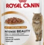 Royal Canin Intense Beauty Adult In Jelly