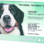 Capstar Large Dog Green