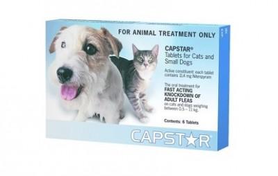 Capstar Cat