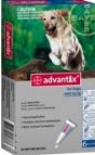 Advantix Extra Large Dog Grey