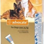 Advocate Extra Large Dog Grey (Over 25kg)