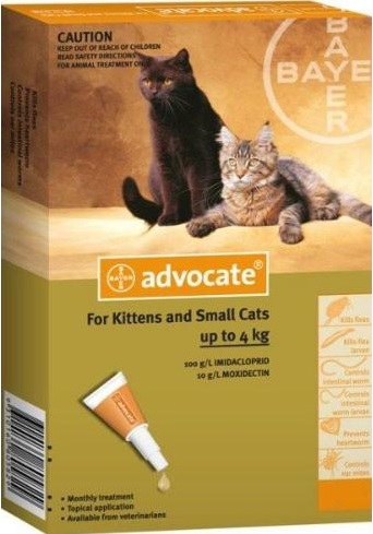 Advocate Kitten And Small Cat Orange (Up To 4kg)