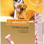 Advocate Large Dog Red (10-25kg)