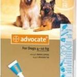 Advocate Medium Dog Blue (4-10kg)