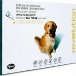 Revolution Extra Large Dog Green (20-40kg)