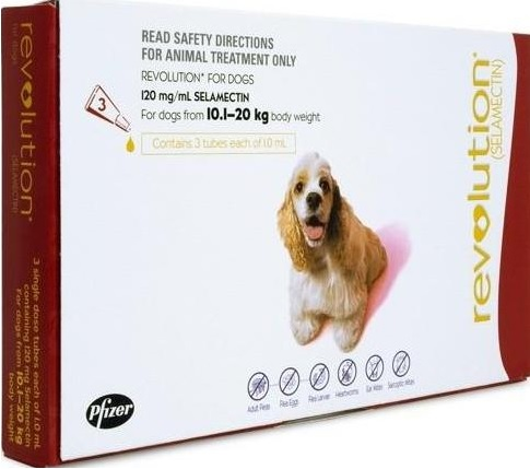 Revolution Large Dog Red (10-20kg)
