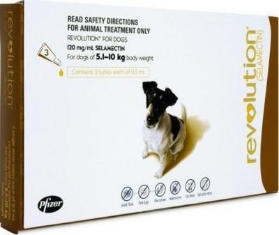 Revolution Medium Dog Brown (5-10kg)