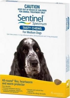 Sentinel Spectrum Tasty Chews Medium Dog Yellow (11-22kg)