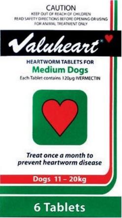 Valuheart Medium Dog Green (11-20kg)