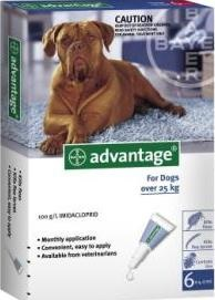 Advantage Extra Large Dog Grey