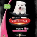Supercoat Puppy