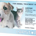 Capstar Small Dogs And Cats Blue