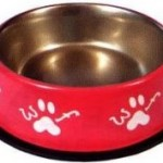 Woof Stainless Steel Bowl