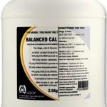 Balanced Calcium Powder