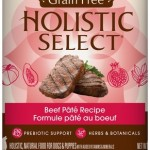 Holistic Select Grain Free Beef (cans)
