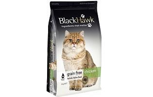 Black Hawk Cat