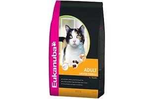 Eukanuba Cat